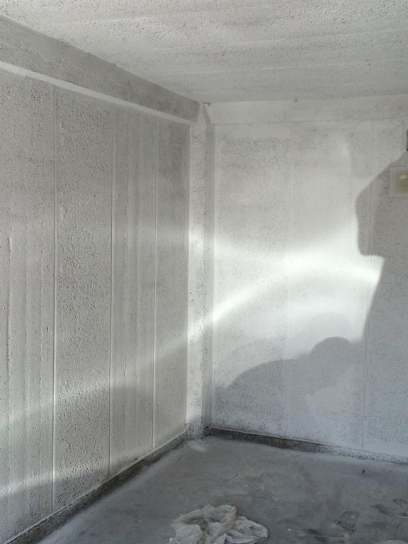 Wagner Sprühsystem WallPerfect FLEXIO 585 Garage hinterher - Probenqueen