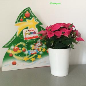 Weihnachts_Tradition_Probenqueen