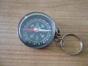 Kompass-Probenqueen